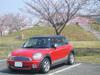 Mini_sakura