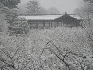 Toufukuziyuki