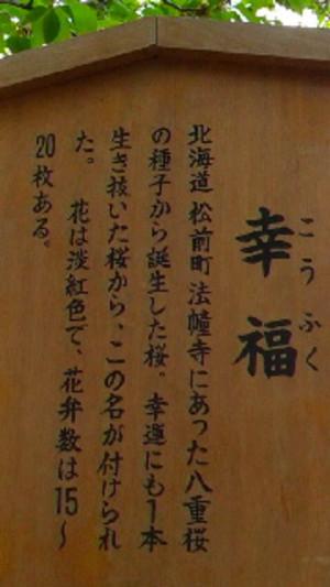 Koufuku_kanban